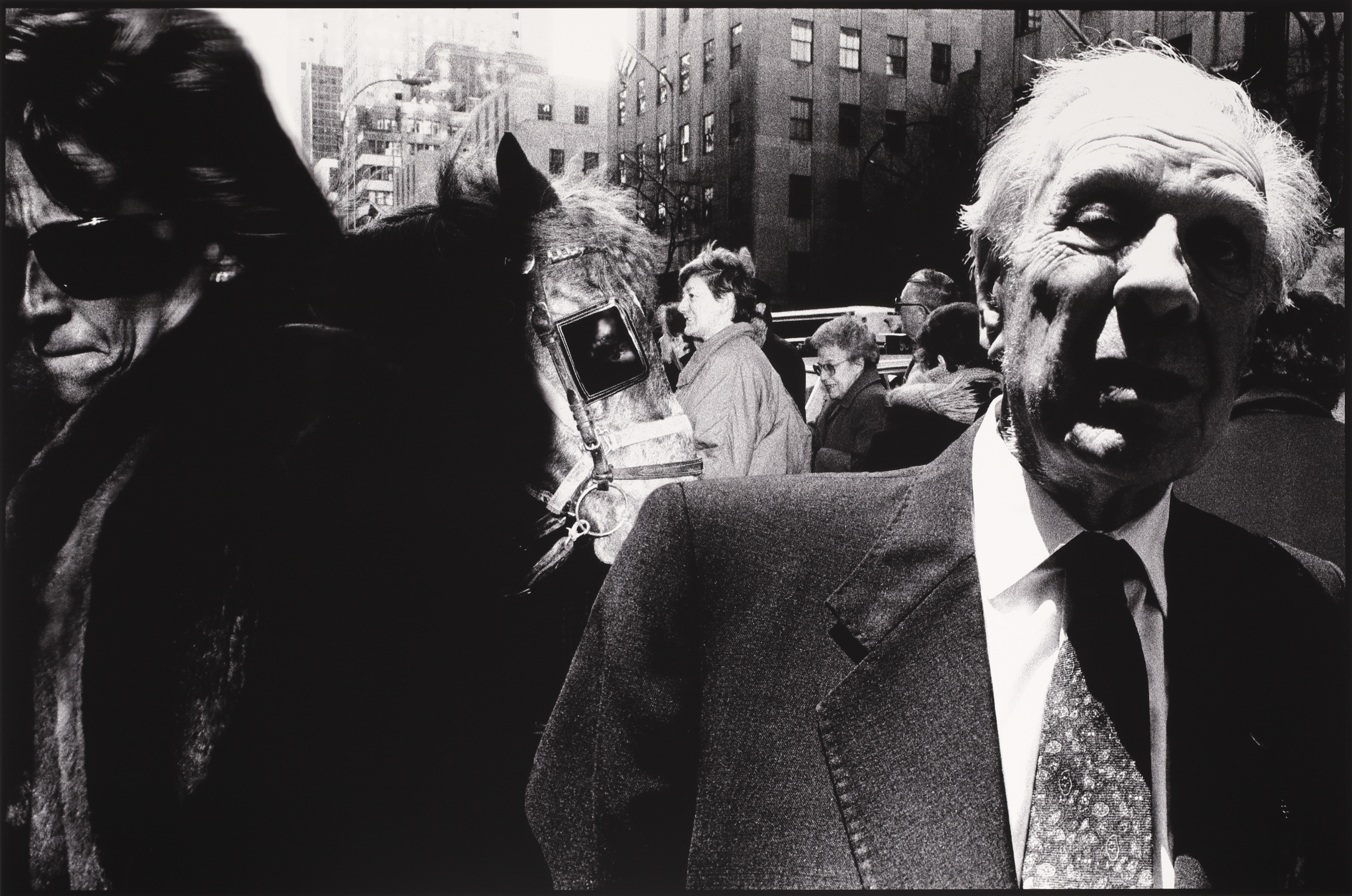 Borges on 5th Avenue (New York, New York, USA)