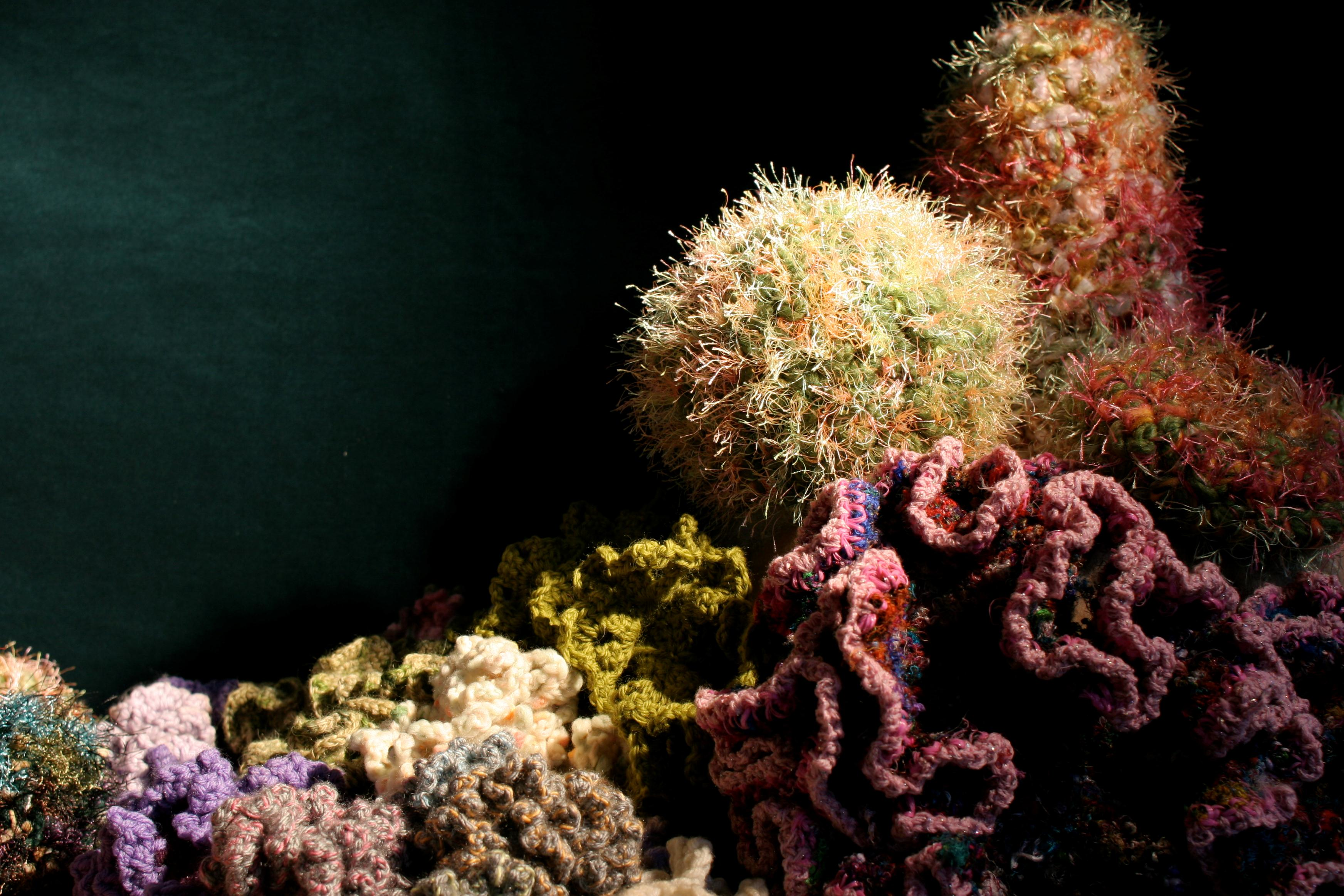 Crochet Coral Reef by Margaret and Christine Wertheim and the Institute For Figuring (featuring sea slug by Marianne Midelberg). Photo © IFF by Alyssa Gorelick.