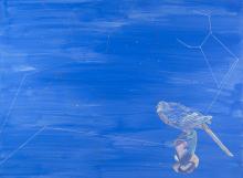 Hydra Cluster,
